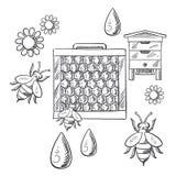 Biodling och bikupa skissade objekt Arkivfoto