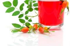 Biodra i owocowy herbaciany zakończenie na białym tle Zdjęcia Royalty Free