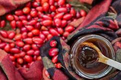 Biodro jagody na tkanina terakotowym kolorze i Obrazy Stock