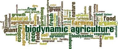 Biodynamic agriculture word cloud. Concept. Vector illustration vector illustration