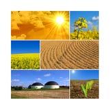 Bioenergia Immagine Stock Libera da Diritti