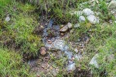 Biofilm durch Ansammlung von Mikroorganismen auf der Wasseroberfläche, Österreich lizenzfreie stockfotografie