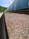 Biofilter для обработки загрязнянного воздуха Стоковое фото RF