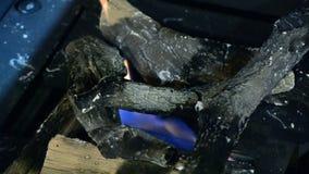 Biofireplace y leña de cerámica a prueba de calor metrajes