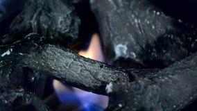 Biofireplace y leña de cerámica a prueba de calor almacen de metraje de vídeo