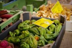 Biofruit en van de plantaardige landbouwer markt Stock Foto's