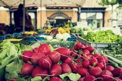 Biofruit en van de plantaardige landbouwer markt Stock Afbeelding