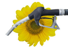 Biofuel Stock Images