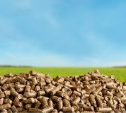 Biofuel. Boilers biomass wood pellet mass bio royalty free stock photography