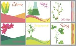 Biofuel bronnen Stock Foto