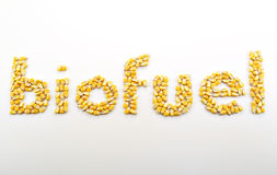 Biofuel I Royalty Free Stock Images