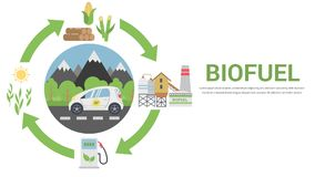 Biofuel life cycle. Biomass Ethanol From Corn, Sugarcane, Wood, Flat Design Vector Concept Illustration . Isolated on the White Background Royalty Free Stock Images