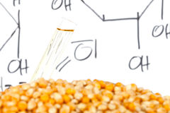 Biofuel process Stock Photography