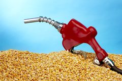 Biofuel still life Royalty Free Stock Images