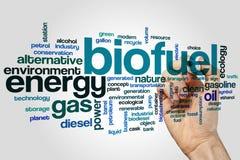Biofuel word cloud stock image
