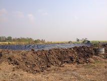 Biogas bedeckte Lagune Stockbild