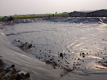 Biogas Covered Lagoon Stock Photo