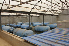 Biogas engineering plant Stock Photo