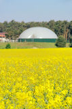Biogas plant field. Biomass plant and field in spring stock photography