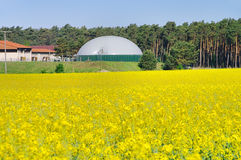 Biogas plant rape field Stock Images