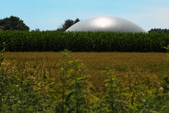 Biogasanlage in a corn field against the blue sky, agriculture c Stock Photos