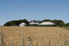 Biogasväxt Arkivbild