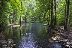 Biograd lake Royalty Free Stock Images