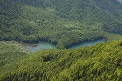 Biogradsko sjö bland den gröna skogen royaltyfria bilder
