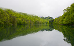 Biogradsko sjö på nationalparken Biogradska Gora, Montenegro Arkivfoto