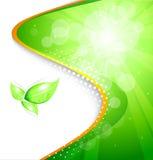 Biohintergrund Lizenzfreie Stockfotos