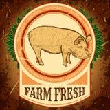 Biohof frisch Weinleseaufkleber mit Schwein auf Schmutzhintergrund Stockbilder