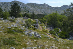 Biokovo-Berge, alte Ruinen Stockbild