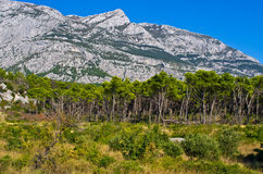 Biokovo park, Riviera Makarska, Croatia Stock Photo