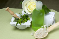 Biolagical home made product. Biological and ecological home made cosmetics and house cleaning stock photography