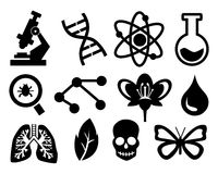 biología Imagen de archivo libre de regalías