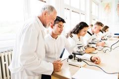 Biología de enseñanza del profesor mayor a los estudiantes de la High School secundaria en trabajo Fotos de archivo libres de regalías