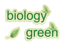 Biología verde Fotografía de archivo