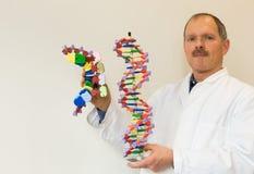 Biologe zeigt DNA und mRNA lizenzfreie stockfotos