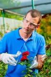 Biologen undersöker blommor, processar Arkivfoton