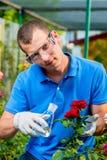 Biologenfachmann mit einem Reagenzglas entnimmt eine Probe Lizenzfreies Stockbild