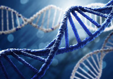 Biologi, vetenskap och läkarundersökningteknologibegrepp royaltyfri bild