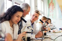 Biologia d'istruzione dell'insegnante senior agli studenti in laboratorio Immagini Stock Libere da Diritti