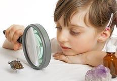 Biologia da educação para crianças Fotos de Stock Royalty Free