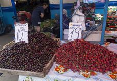 Biological cherries and strawberries. Strictly biological cherries and strawberries, sold directly by the farmers, to the central market of chisinau in the royalty free stock images
