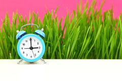 Biological clock Royalty Free Stock Image