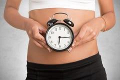 Biological Clock Royalty Free Stock Image