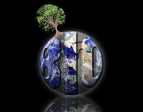 Biological earth Royalty Free Stock Photo