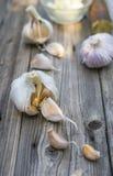 Biological garlic. Garlic is the beste natural antibiotic Stock Photos