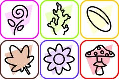 Biological icons set Royalty Free Stock Images
