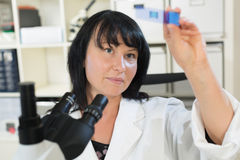 Biological laboratory Royalty Free Stock Images